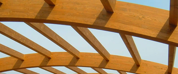 Grandi strutture in legno lamellare